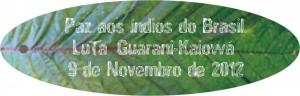 guarani_cartao1